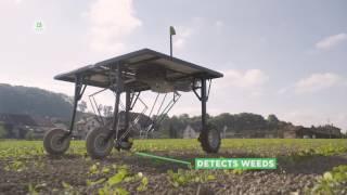 EcoRobotics robotic weed killer