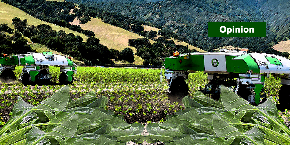 Agricultural Weeding Robots Reduce Costs, Benefits Workers and Protects the Environment